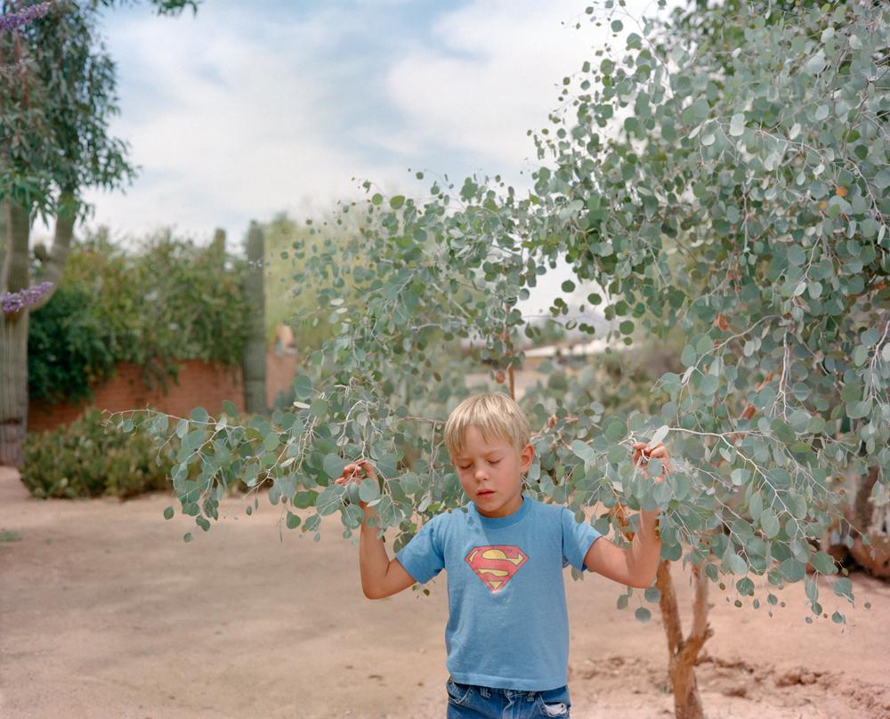 © Jo Ann Walters, Phoenix, Arizona 2000